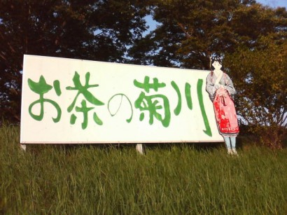 blog-photo-1221213856.75-0